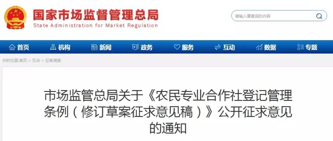 市场监管.webp.jpg